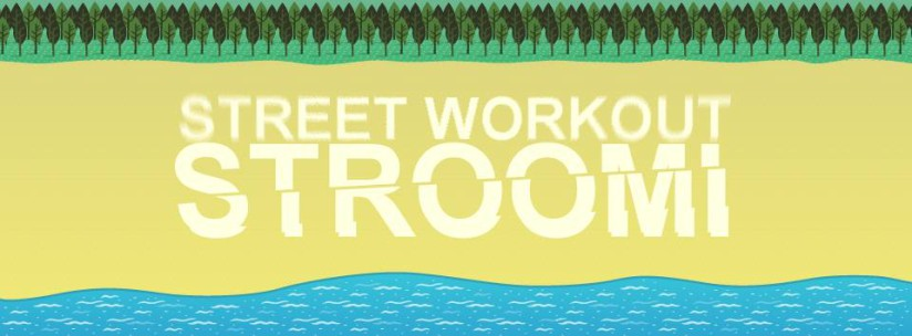Street Workout Stroomi Fest