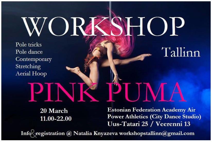 Pink Puma workshop